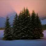 Kış Fotoğrafları Yarışması Sonuçlandı